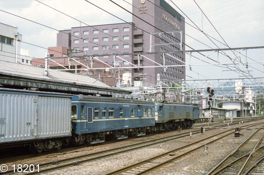 マヤ34 2005